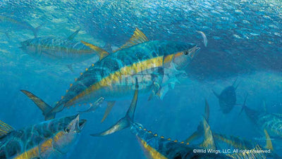 Wrecking Crew-Yellowfin Tuna Art Collection