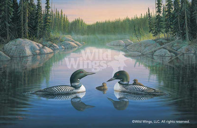 North Country Loons.