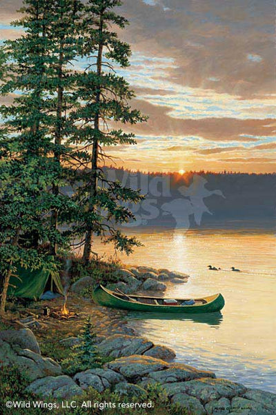 Summer Sunrise-Camping Art Collection