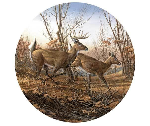 Autumn Run—deer Coasters