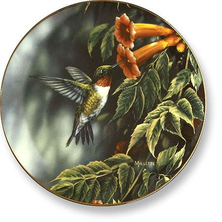 Summer Hummingbird Collector Plate