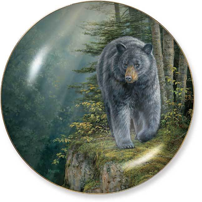 Rocky Outcrop Bear.