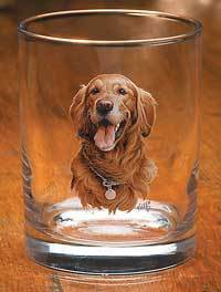 Golden Retriever II