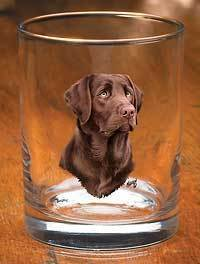 Chocolate Lab II.