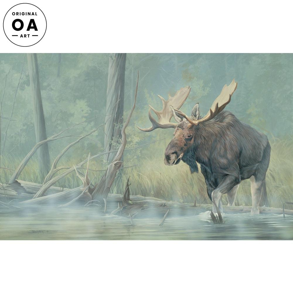 Backwaters—Moose.