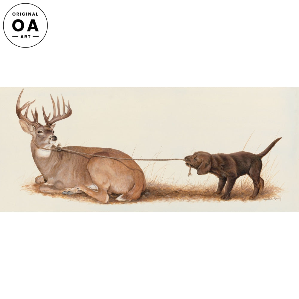 Rope a Dope—Chocolate Lab and Whitetail Deer.