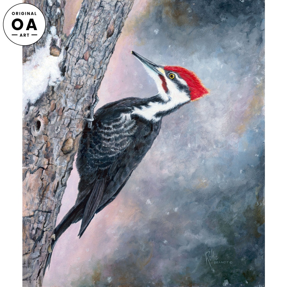 Striking Distance—Pileated Woodpecker Original Art