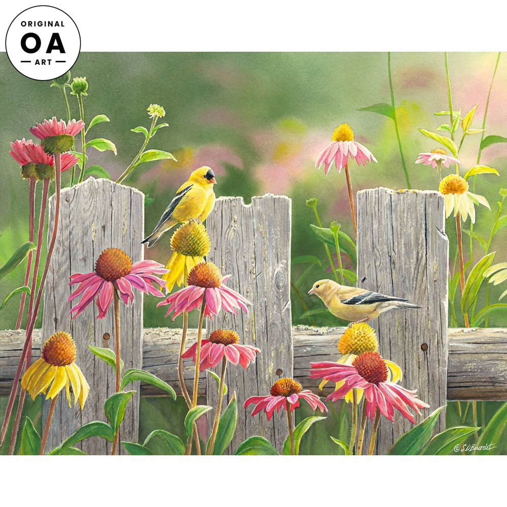 Goldfinches & Coneflowers.
