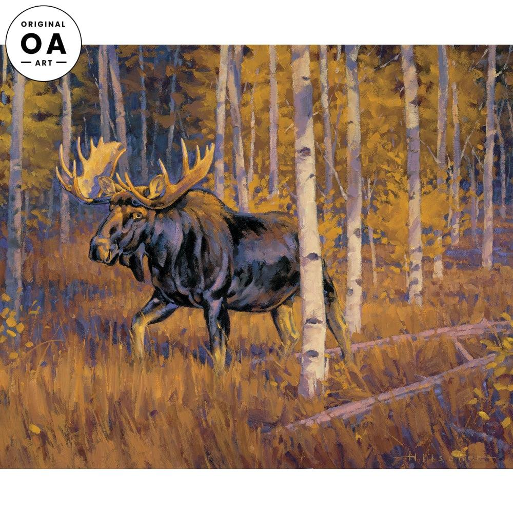 Autumn Gold—Moose.