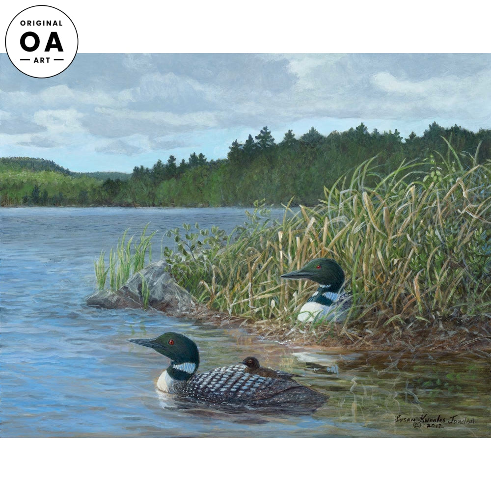 <i>Island Nest&mdash;Loon</i> Original Artwork