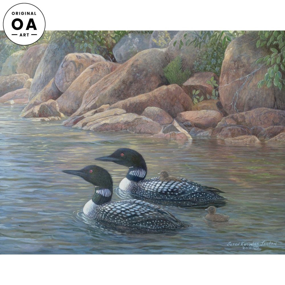 <i>Pink Granite&mdash;Loons</i> Original Artwork
