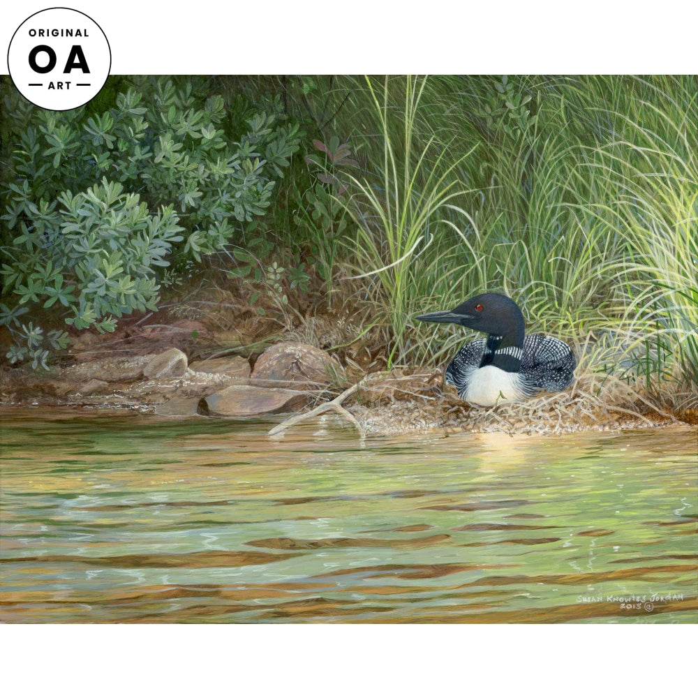 <i>Sunlit&mdash;Loon</i> Original Artwork