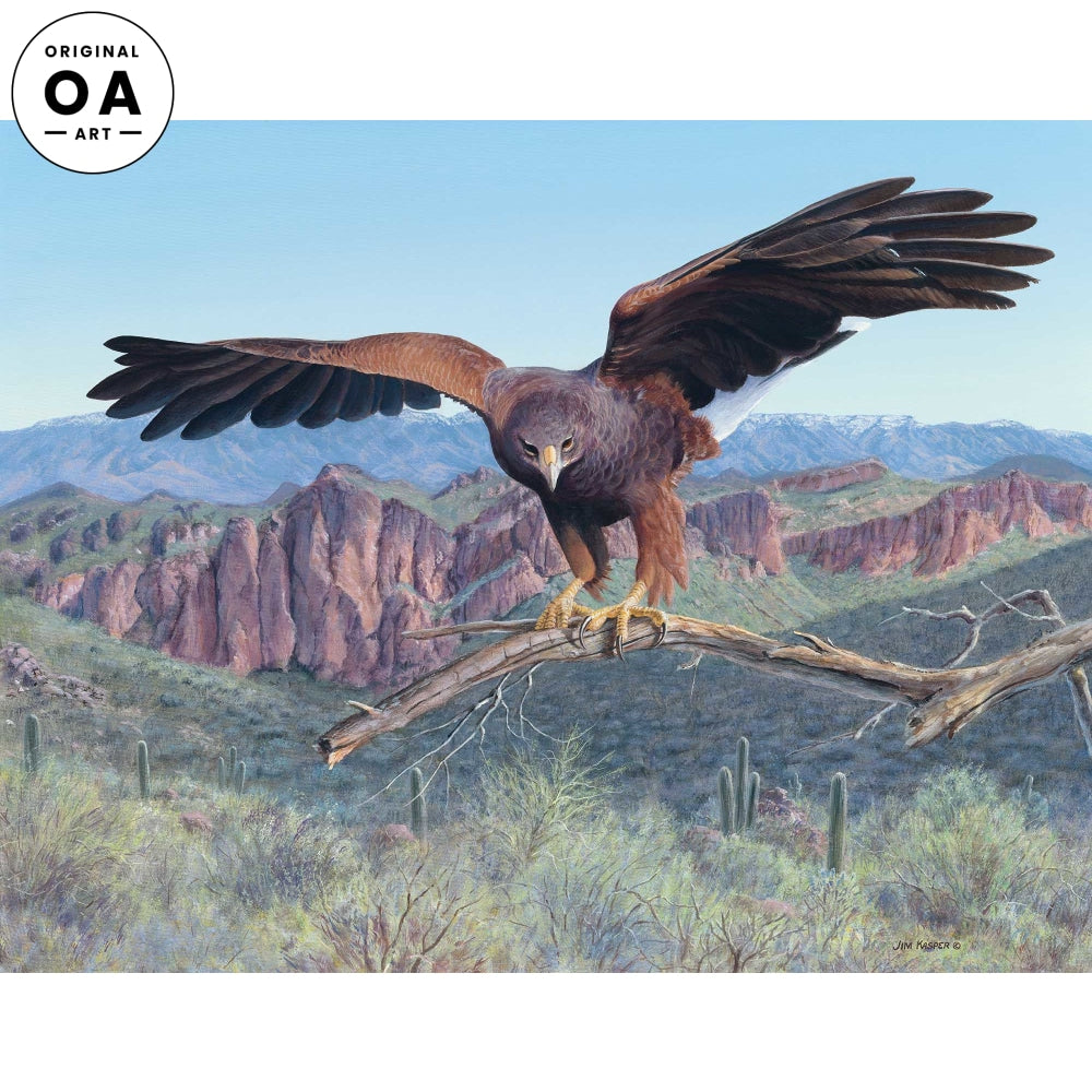<i>Attack&mdash;Harris Hawk</i> Original Artwork
