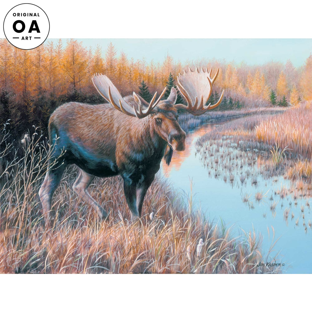 <i>Tamarack Moose</i> Original Artwork