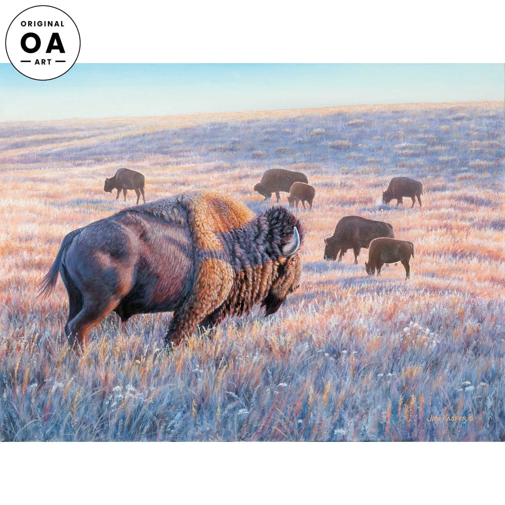 Peaceful Days—Bison Original Artwork