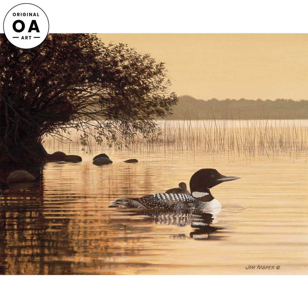 Quiet Time—Loons.