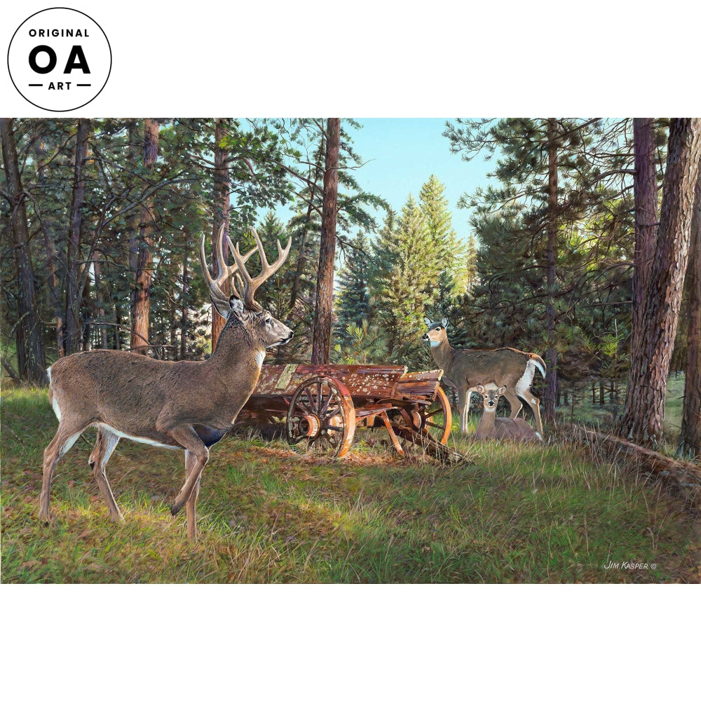 Red Wagon Whitetails—Whitetail Deer.