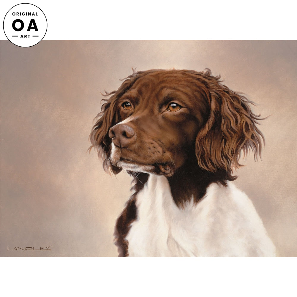 <i>Bad Ear Day&mdash;Springer Spaniel</i> Original Artwork