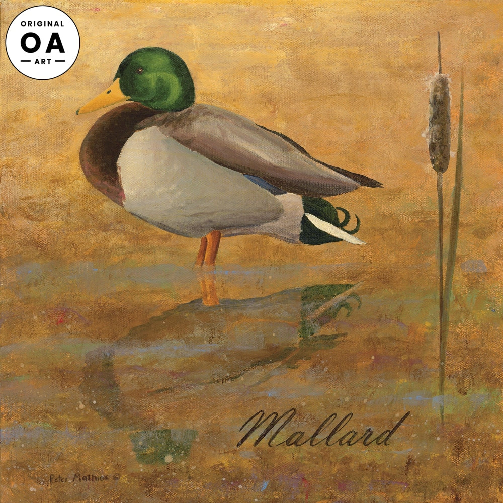 Mallard Original Artwork