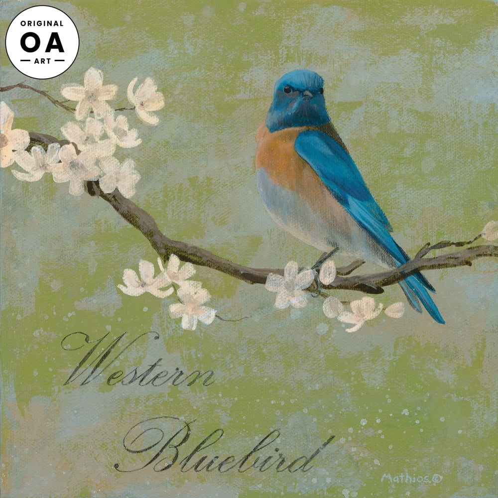 <i>Western Bluebird</i> Original Artwork