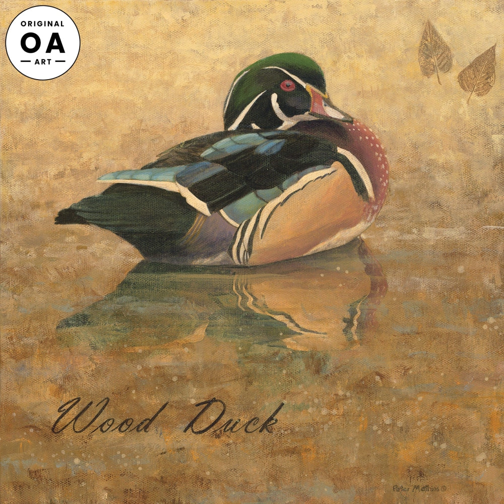 Wood Duck Original Artwork