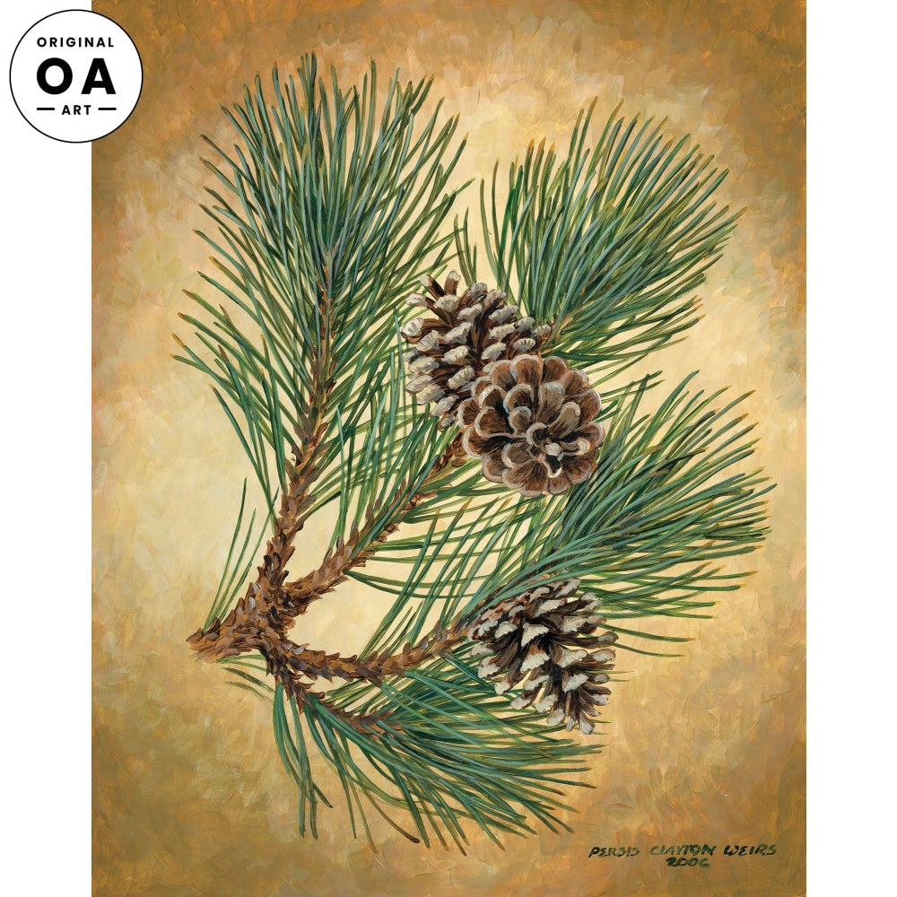 <i>Fruits of the Red Pine I</i> Original Artwork