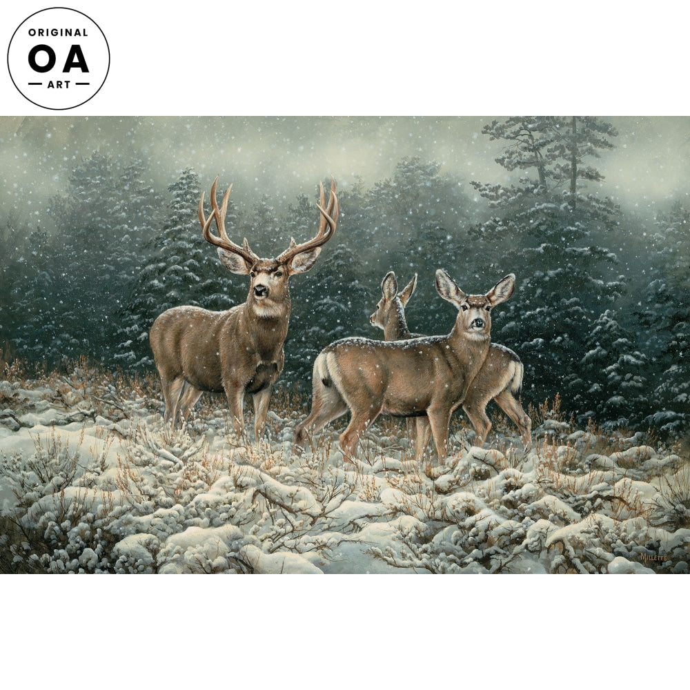 <i>Snowy Retreat&mdash;Mule Deer</i> Original Artwork