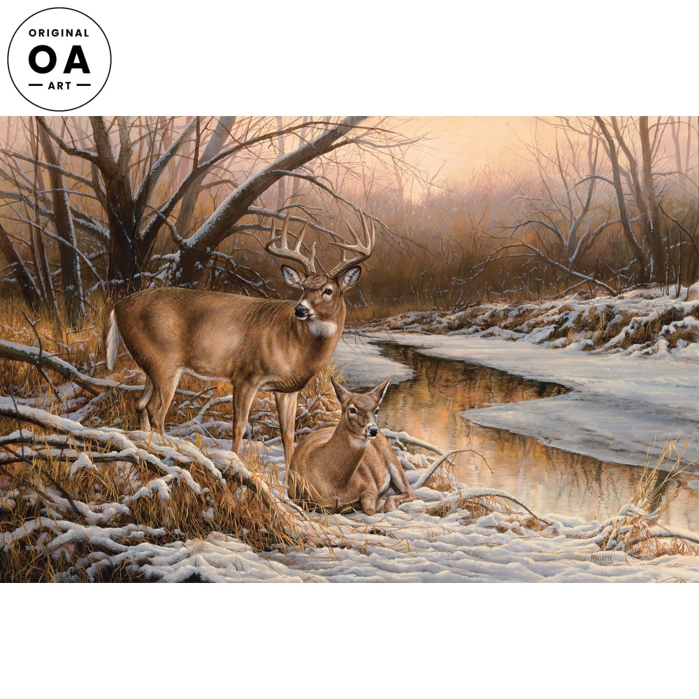 <i>Winter Retreat&mdash;Whitetail Deer</i> Original Artwork