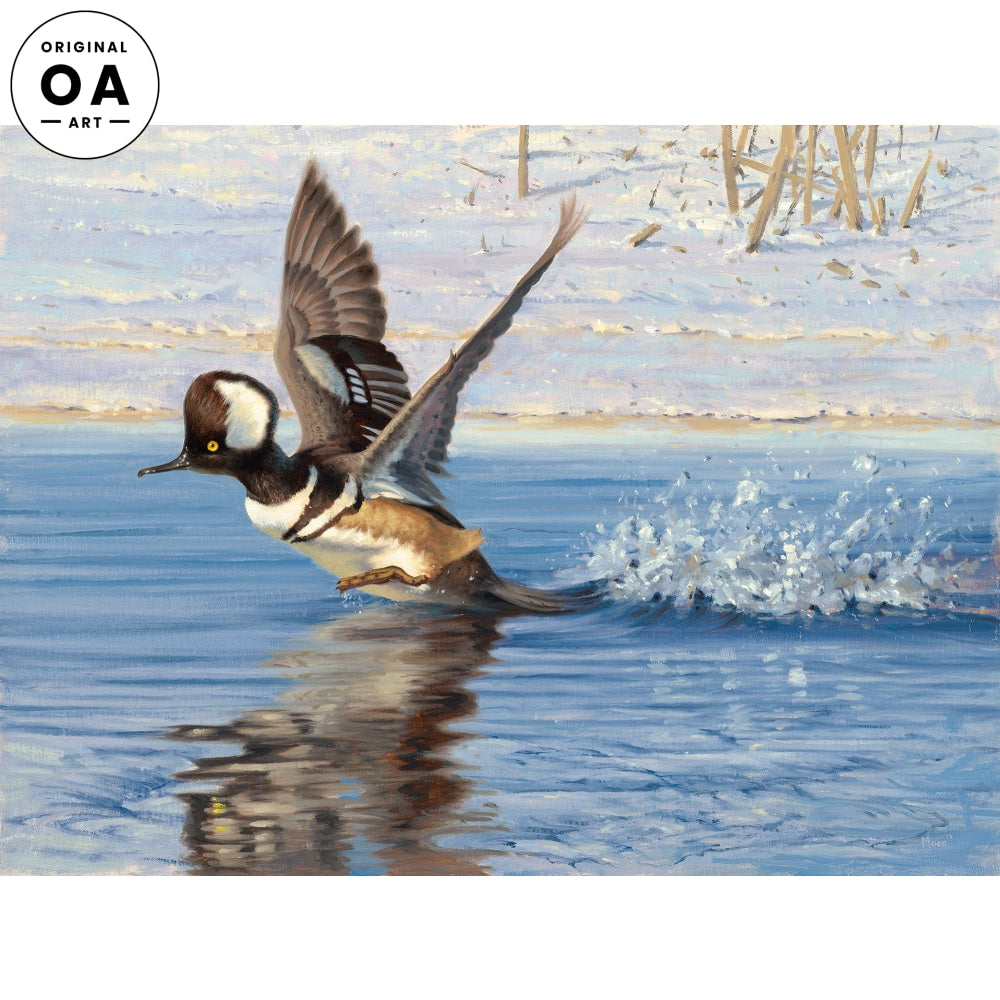 <i>Pitter Patter&mdash;Merganser</i> Original Artwork