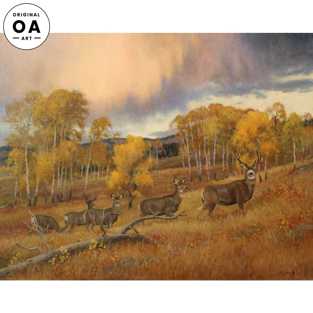 Autumn Mule Deer, Lamar Valley Original Oil Painting