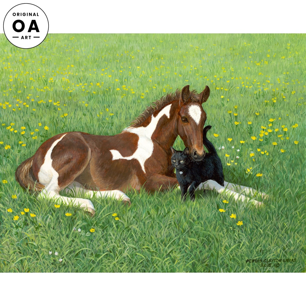 Buttercups—Colt and Cat.