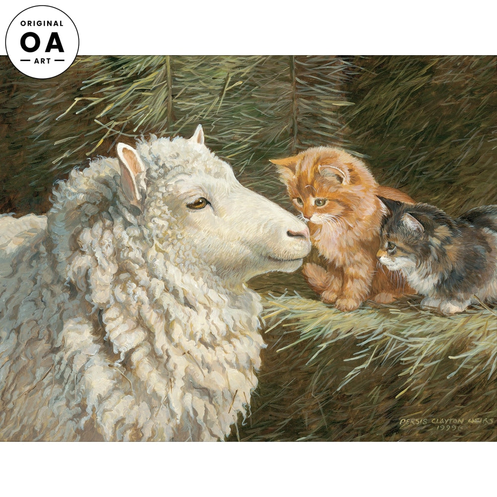 Greetings—Sheep & Cats.