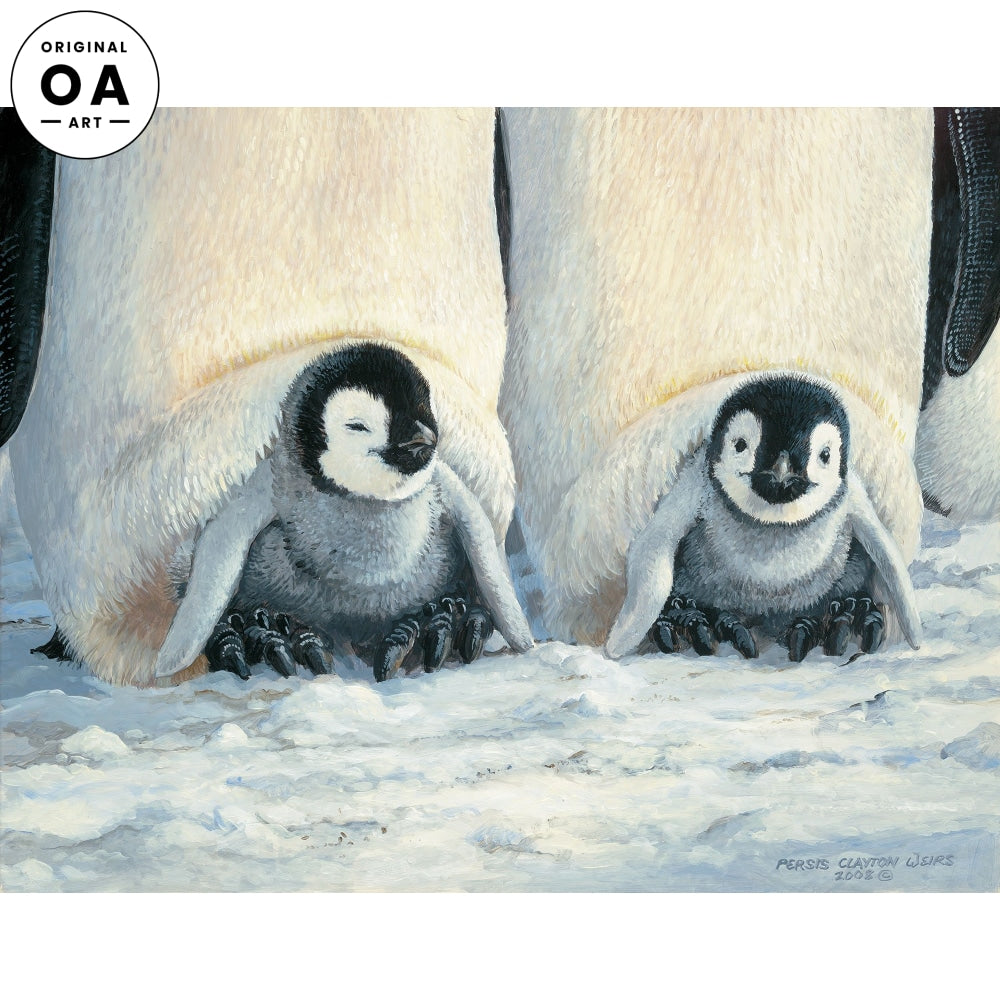 Keeping Warm—Penguins.