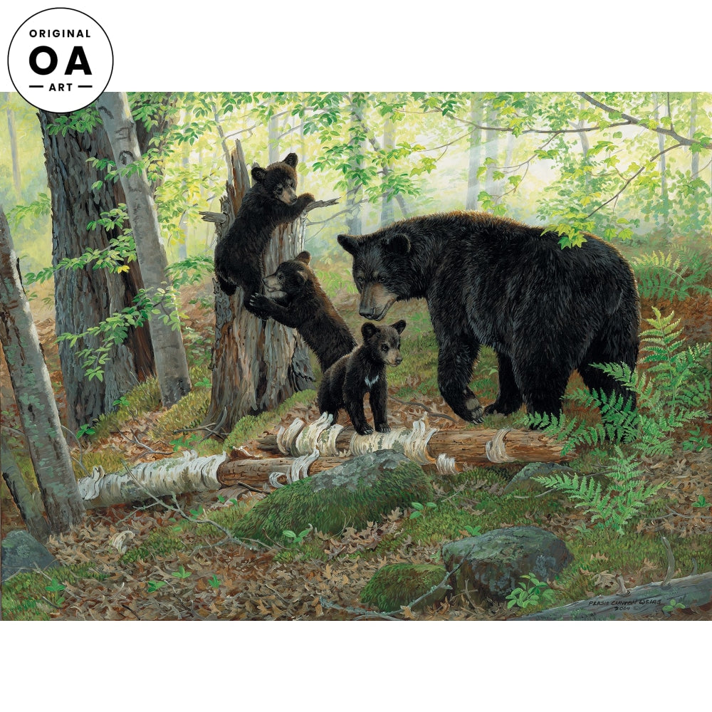 Playtime—Black Bears Original Artwork