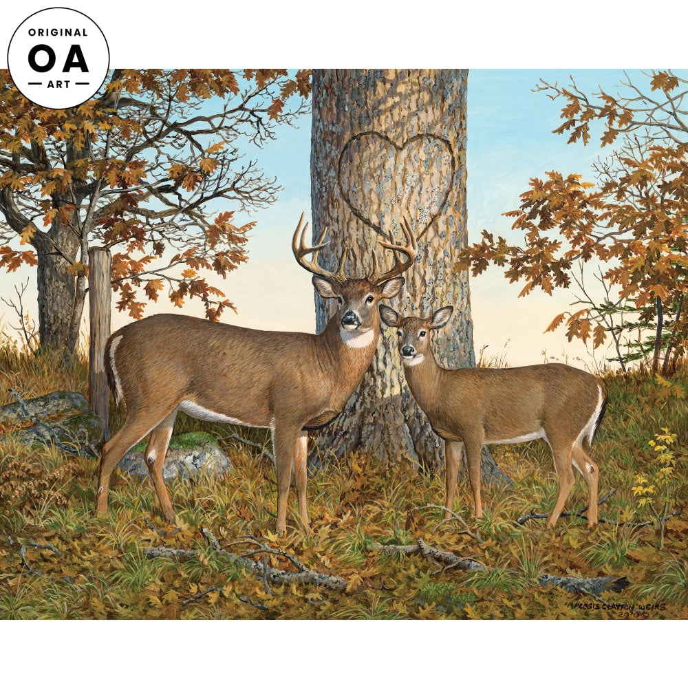 Timeless Magic—Whitetail Deer Original Artwork