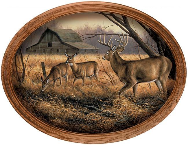 Abandoned Farmstead—deer Framed Canvas Oval