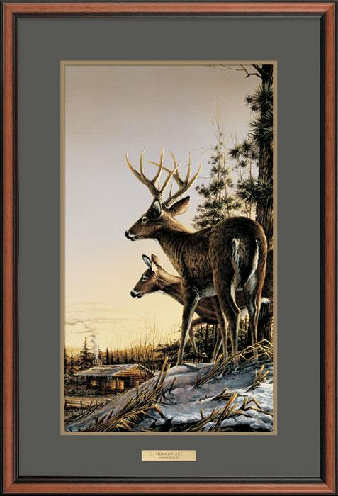All Clear-Deer Art Collection