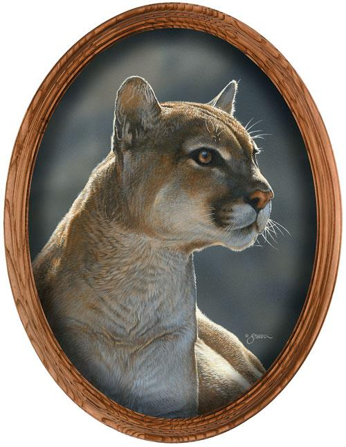 <I>Cougar Portrait</i> Framed Canvas Oval