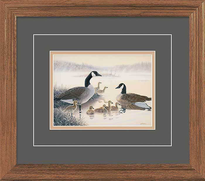 Peaceful Renewal—canada Geese Gna Deluxe Framed Print