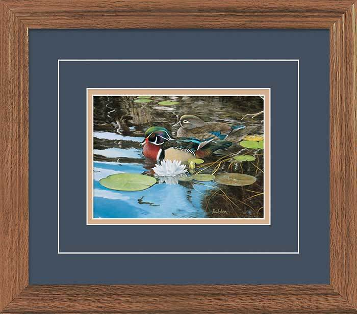 Reflections Of Spring—wood Ducks Gna Deluxe Framed Print