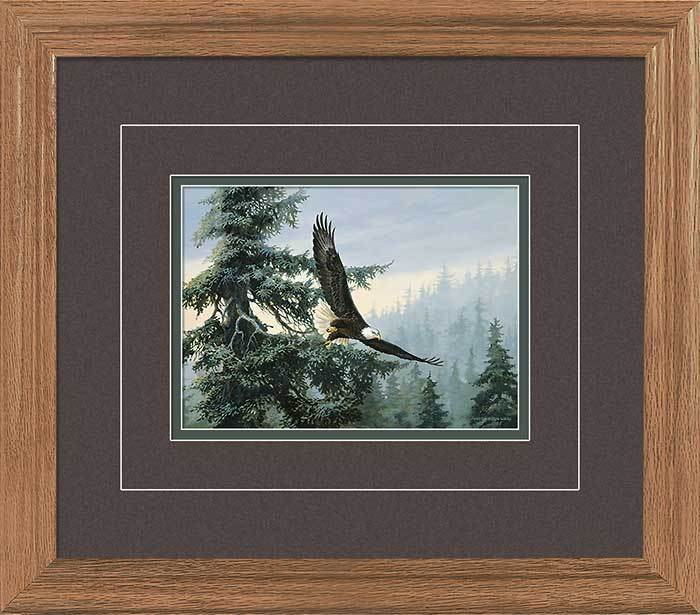 Soaring To Great Heights—eagle Gna Deluxe Framed Print
