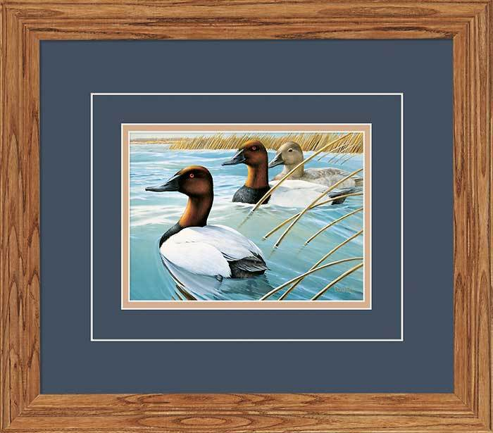 Canvasbacks Gna Deluxe Framed Print
