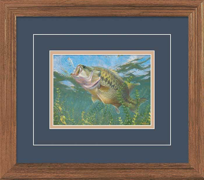 On Top—largemouth Bass Gna Deluxe Framed Print
