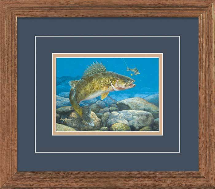 Stinger—hooked Walleye Gna Deluxe Framed Print