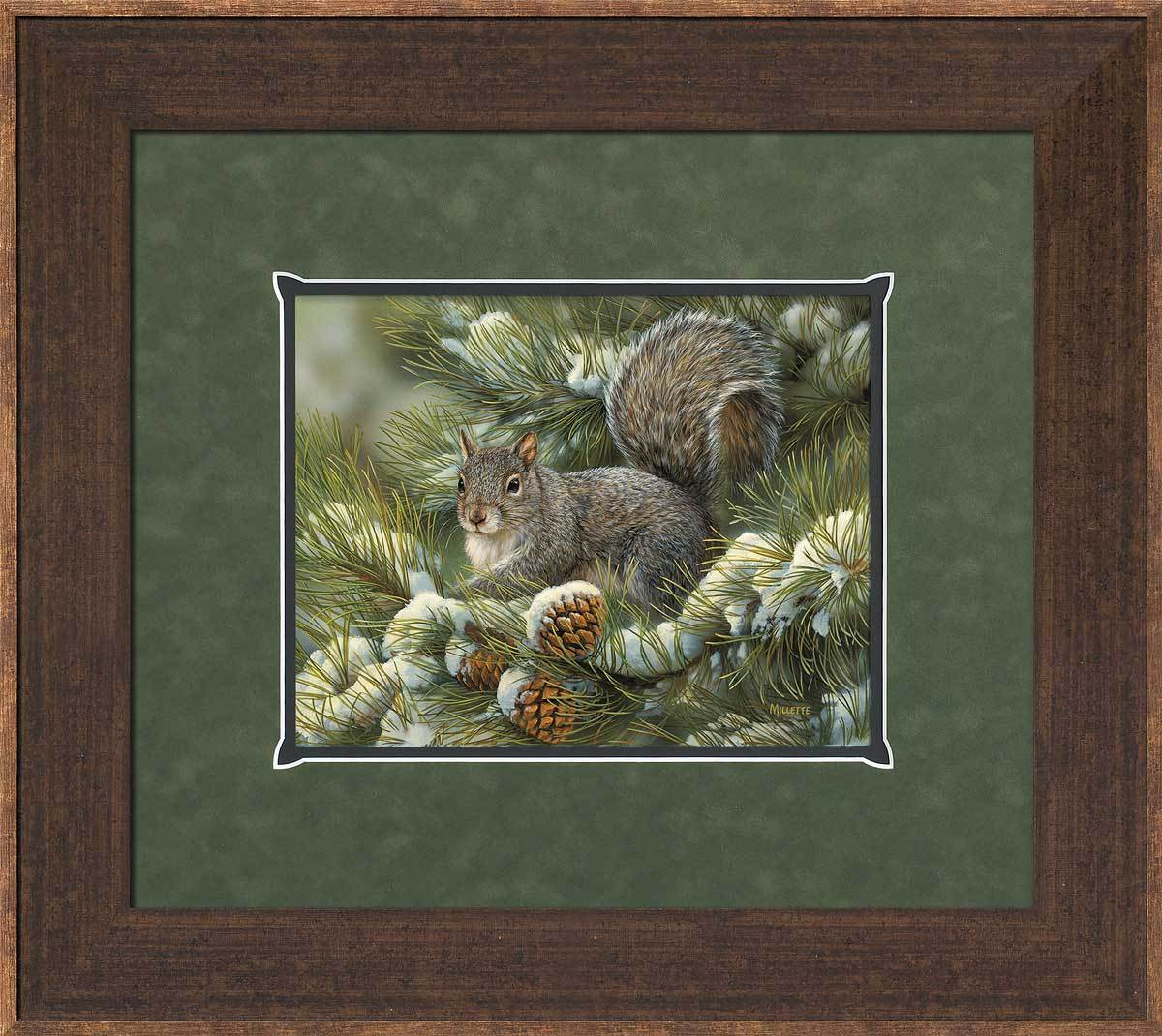 Designer Gray Squirrel