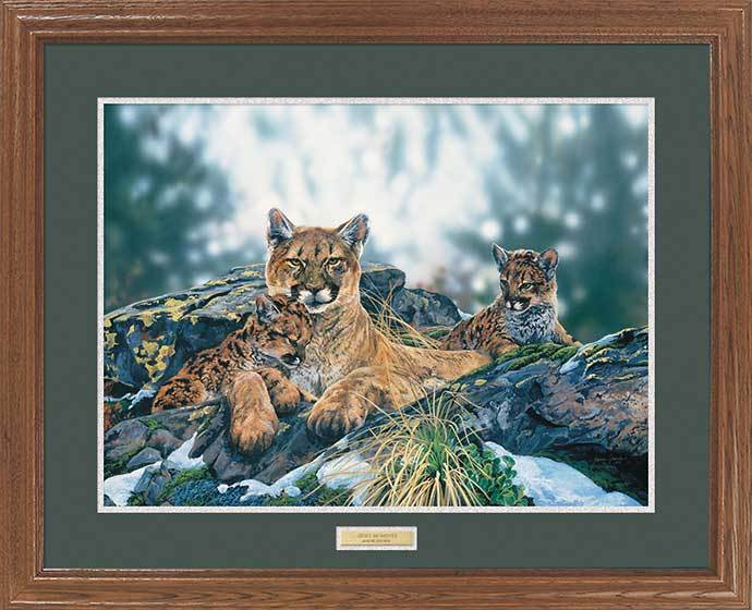 <I>Quiet Moments&mdash;mountain Lions</i> Gna Premium Framed Print<Br/>25H X 31W Art Collection