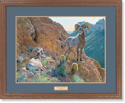 <I>Overseer&mdash;desert Bighorn Sheep</i> Gna Premium Framed Print<Br/>25H X 31W Art Collection