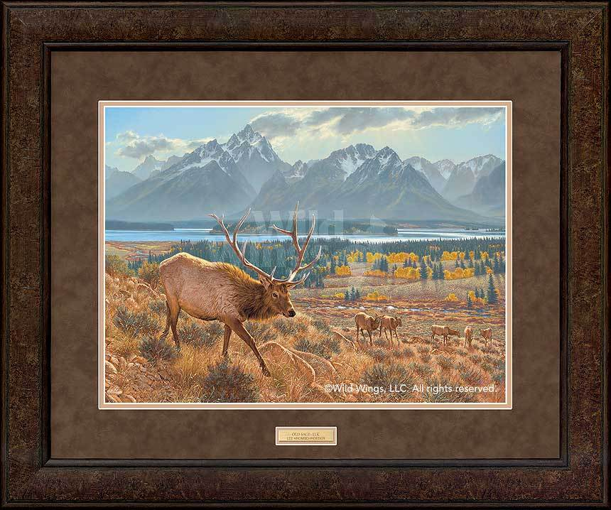 <I>Old Sage&mdash;elk</i> Gna Premium+ Framed Print<Br/>29H X 35W Art Collection