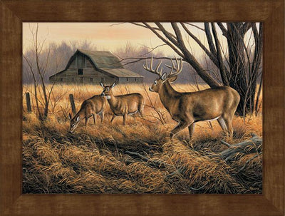 <I>Abandoned Farmstead&mdash;whitetail Deer</i> Framed Studio Canvas<Br/>22H X 29W Art Collection