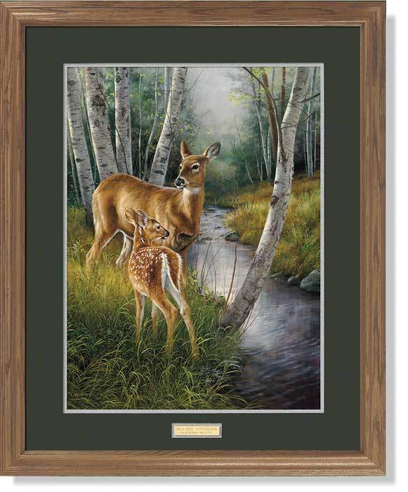 <i>Birch Creek&mdash;Whitetail Deer</i>